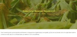 Farmer Jacks Sweetcorn Blog Post